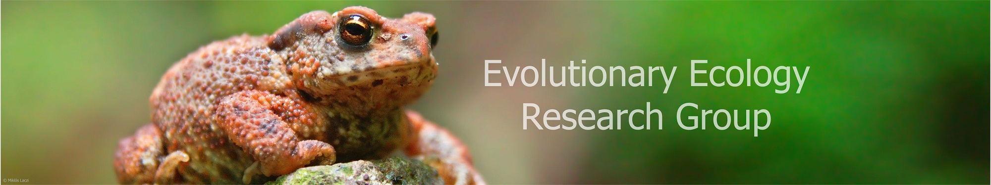 Evolutionary Ecology Research Group, Hungarian Academy of Sciences